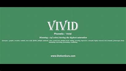 Vivid Meaning Sentence Examples Synonyms