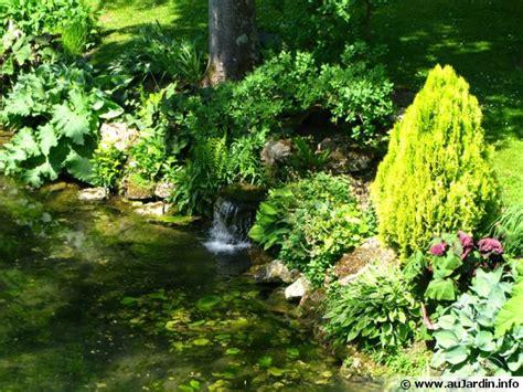 plante de bassin exterieur plantes du bassin