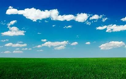 Grass Sky Field Clear Wallpapersafari Wallpapers Code