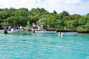 Des autocollants Eco-Aware remis à 28 skippers - Le Mauricien