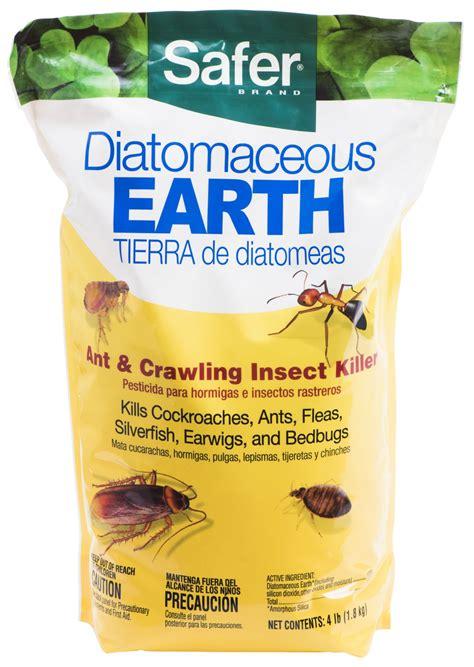 diatomaceous earth bed bugs fleas ants