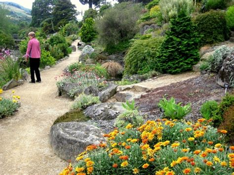 zealand inspired california rock garden sierra