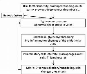 Simplified Diagram Of Pathophysiology Of Chronic Venous Disease  The