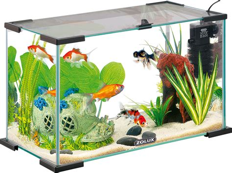 achat aquarium 240l