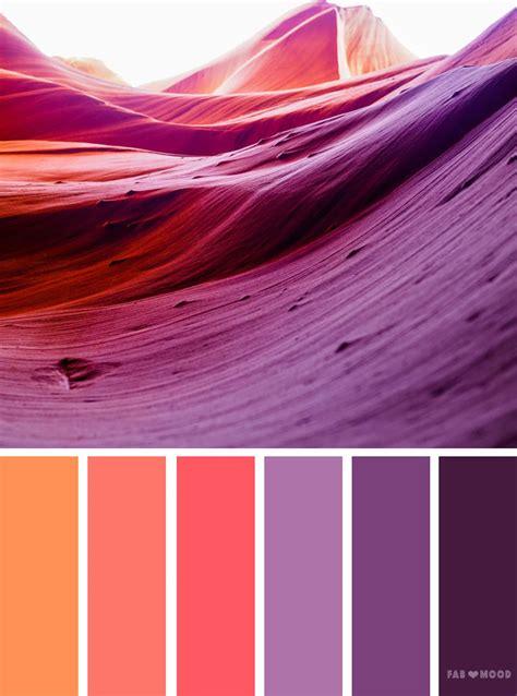 orange  purple color schemeorange peach  purple