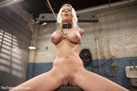 Sweet Tits Blonde Chick Gets Tied Dominate Xxx Dessert