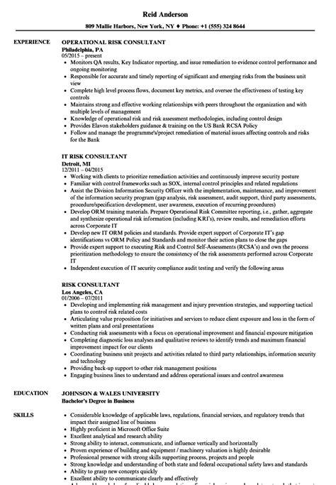 risk consultant resume sles velvet