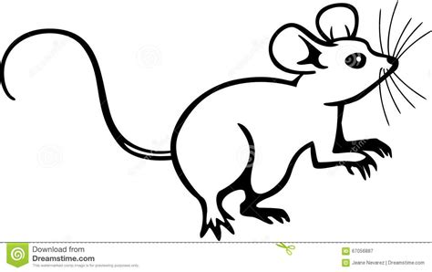 Mouse Stock Vector. Illustration Of Mammal, Artwork
