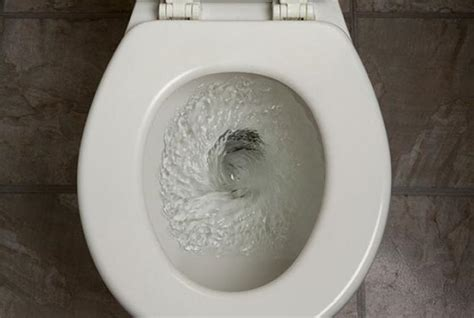 australian toilets don t flush backwards because of the coriolis effect mental floss