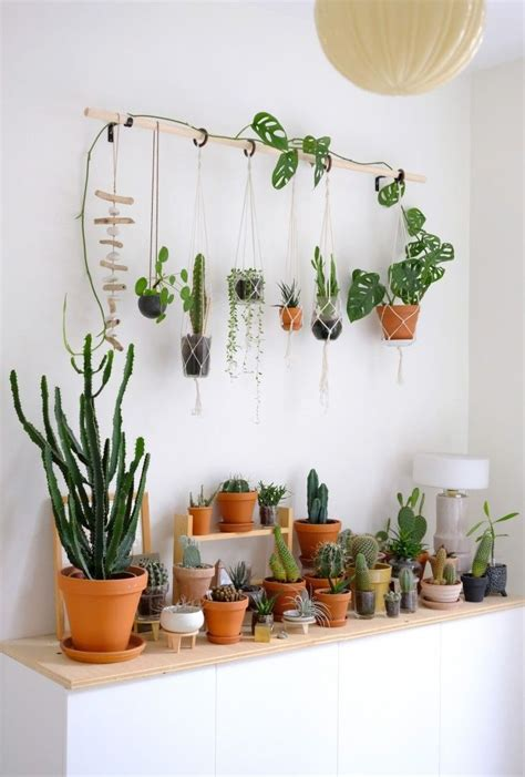 Diy Hanging Plant Wall With Macrame Planters Plants