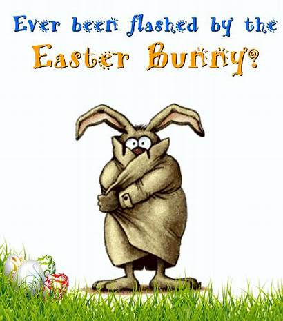 Easter Fun Funny Ecard Bunny Ecards 123greetings