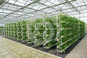 Hydroponic greenhouse design plans, rubbermaid 7 x 7 shed