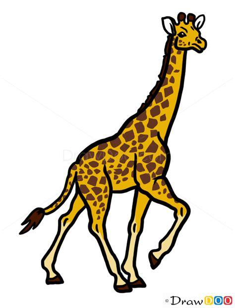 giraffe drawing wild animals step  step drawing