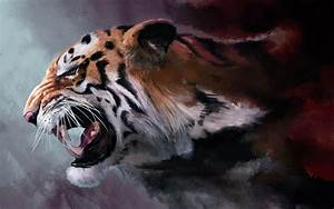 Fierce Tiger Wallpaper | www.pixshark.com - Images ...