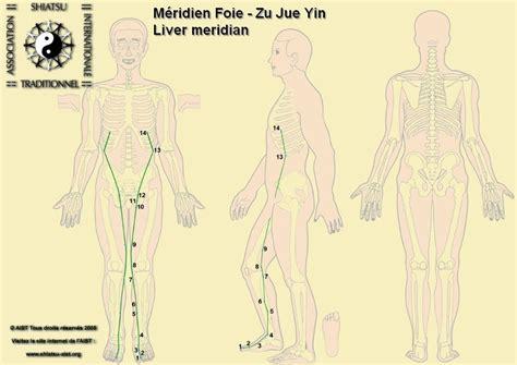 chambre evolutive conforama meridien du poumon acupuncture 28 images le meridien