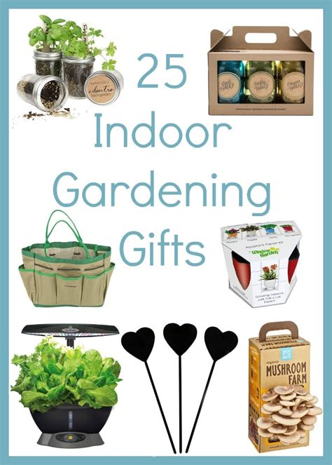 gifts for gardeners who everything how to create a basic herb garden indoors thrifty jinxy