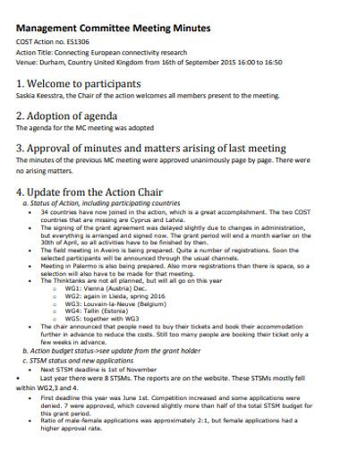 management meeting minutes examples templates