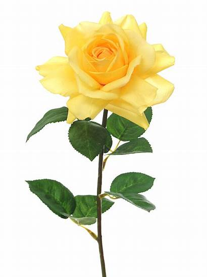 Rose Yellow Artificial Flowers Open Silk Bows