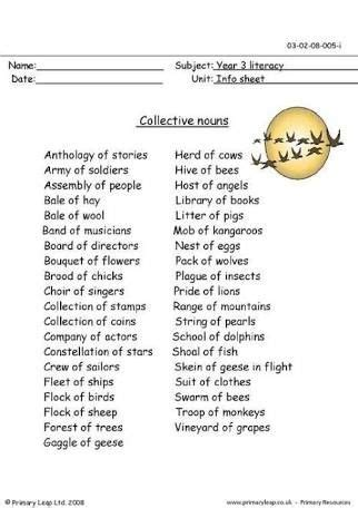 collective nouns worksheet for class 3 google search