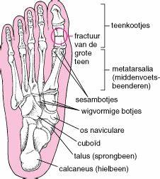 geubels Orthopedie facebook