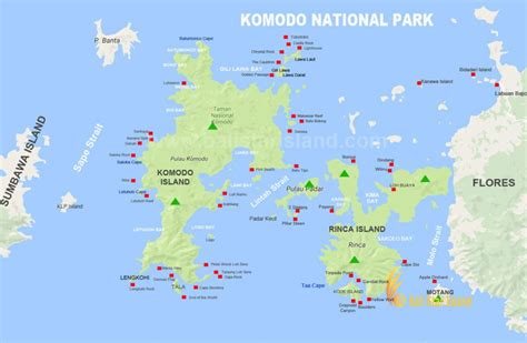komodo national park map flores tourism maps komodo