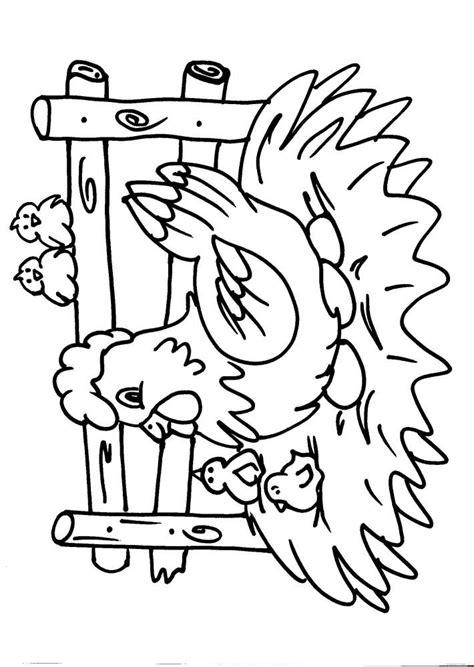 disegni da colorare animali disegni animali da colorare gallo gallina pollo pulcino i