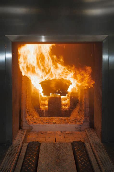 bible    cremation