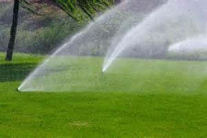 landscaping sprinklers irrigation 171 brackman s stepping stone rock and garden center llc