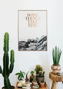 Zimmerpflanzen Für Wenig Licht : sch ne zimmerpflanzen so dekorieren sie ihr zuhause mit pflegeleichten pflanzen ~ Sanjose-hotels-ca.com Haus und Dekorationen