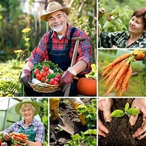 Gemüsegarten Anlegen Für Anfänger : nutzgarten anlegen pflanzplan f r mischkulturen ~ Whattoseeinmadrid.com Haus und Dekorationen