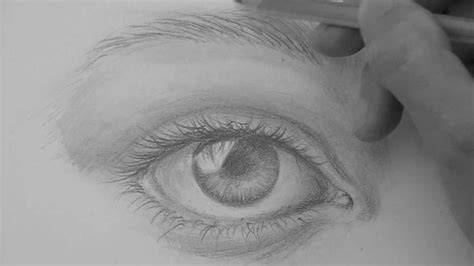 draw  realistic eye eyebrows step  step pencil