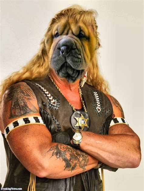 dog bounty hunter pictures freaking news