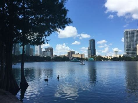 Swan Boats Sunday Hours by 20 Things To About The Farmer S Market At Lake Eola