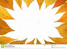 Fall background stock image Image of colors, patterns