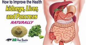 How To Purify Your Kidneys  Liver And Pancreas Naturally