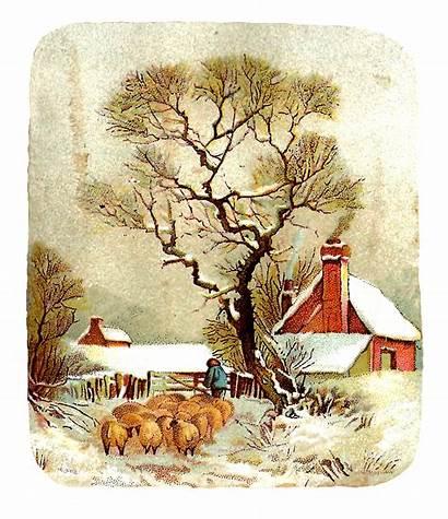 Winter Clip Sheep Clipart Snow Graphic Scene