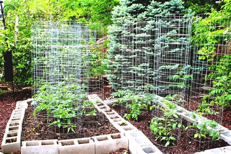 vegetable garden design ideas small gardens home and