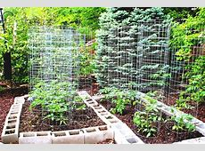 Vegetable Garden Design Ideas Small Gardens Home And