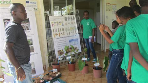 college port louis f 234 te de la science 2014 2014 news cirad regional office