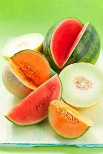 Wassermelone Anbau Balkon : melone z chten so gelingt es auch dem hobbyg rtner ~ Watch28wear.com Haus und Dekorationen
