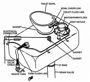 Liquid Flush Toilets