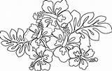 Hawaiian Coloring Flower Pages Printable Lei Flowers Drawing Sheets Luau Blank Leaf Hawaii Drawings Leaves Themed Getdrawings Getcolorings Taro Paintingvalley sketch template