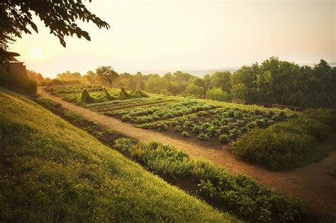 17 Best Images About Views Of Monticello On Pinterest