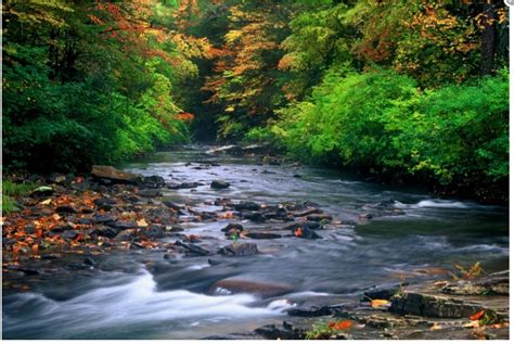 protect virginia waters appalachian voices