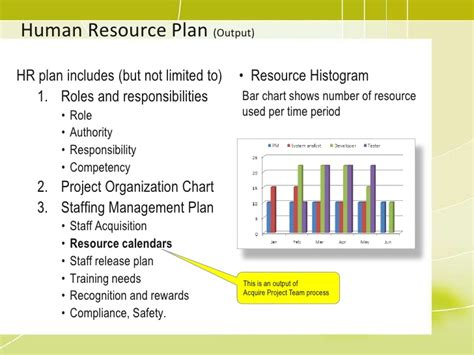 Project Management Staff Training Plan