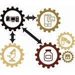 Interoperability Emr System Systems