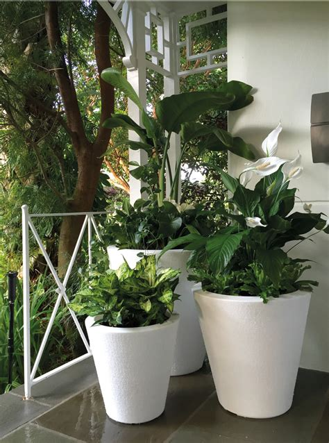 Buy Large Planters by Dot Trudrop Self Watering Planters Gardener S Supply