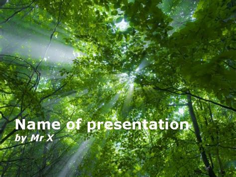 template forest light beam passing through the trees powerpoint template