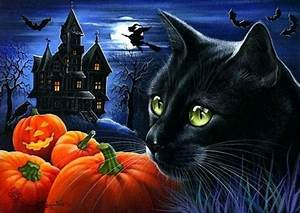 Great Ideas For Halloween Images And Wallpapers