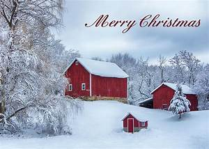 Country, Christmas, Card, Photograph, By, Eleanor, Bortnick